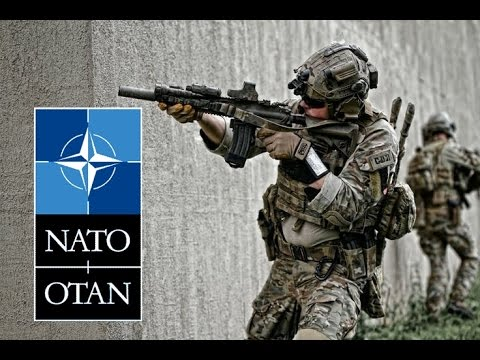 NATO Military | Infantry & Special Forces | Tribute
